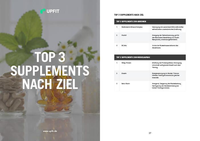 Supplement Guide Leseprobe 3