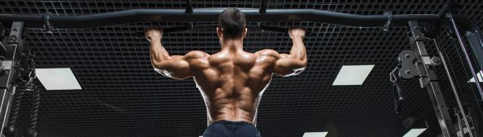 Vegetarisch Muskelaufbau