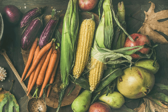 sekundäre pflanzenstoffe nährstoffe ernährung