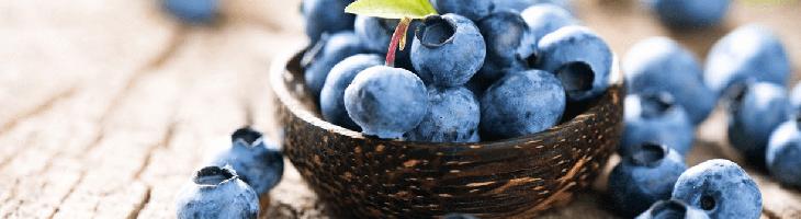 Superfood nährstoffe gesund abnehmen