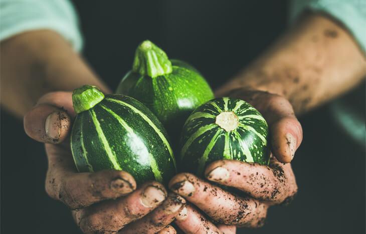 Lebensmittelverschwendung, Foodwaste