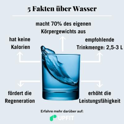 Lebensmittelfakten Wasser - Wasserhaushalt