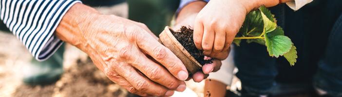 food trends 2020 lokale ernaehrungsbildung