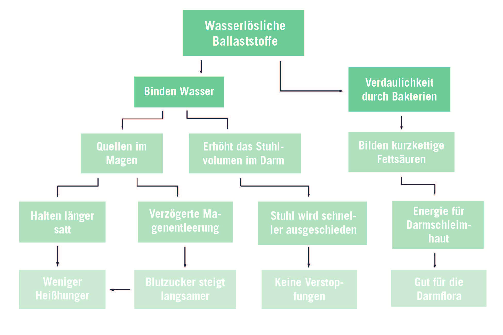 upfit-wasserloesliche-ballaststoffe-grafik