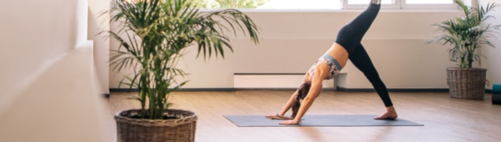 upfit fit ohne fitnesstudio alternativen homeworkout