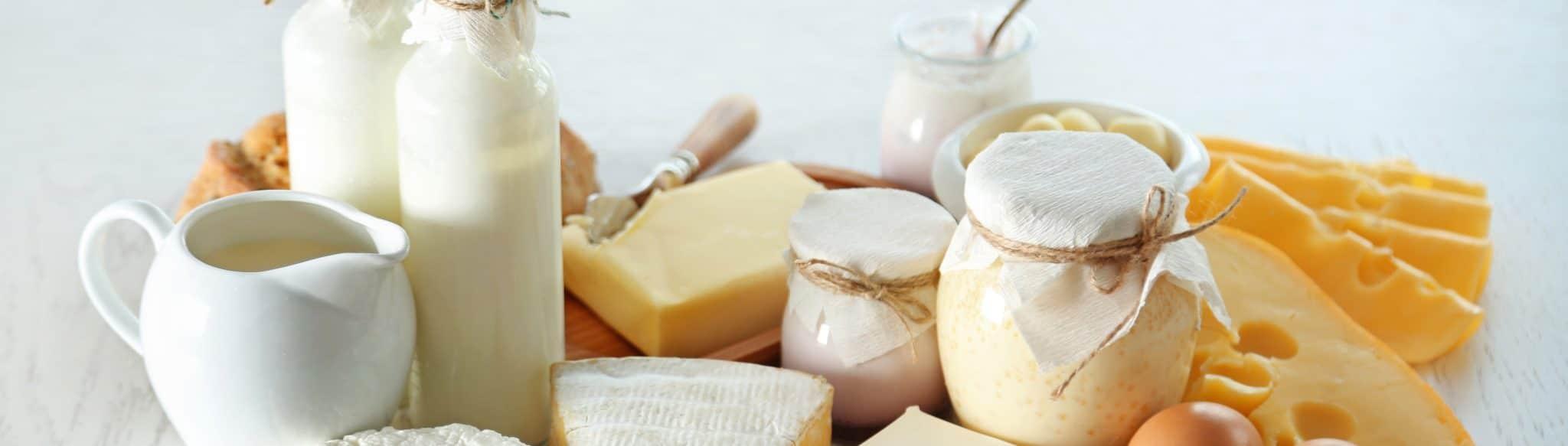 Joghurt_Käse_Fermentierte_Lebensmittel